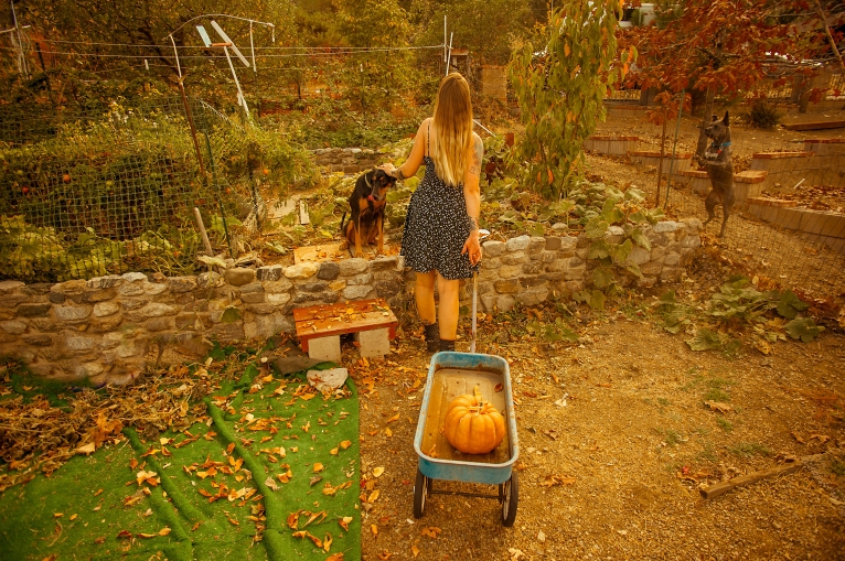 171029_Xtina pumpkin-2