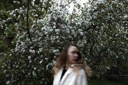 180501_Xtina Apple Tree-3