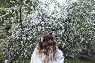 180501_Xtina Apple Tree-4