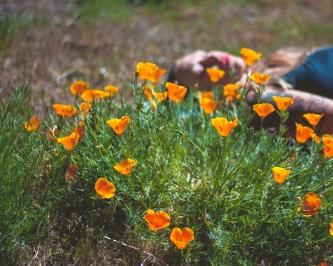 180502_Xtina Florals-1