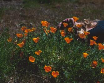 180502_Xtina Florals-2