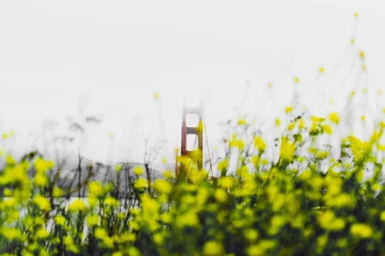 180906_San Francisco-10