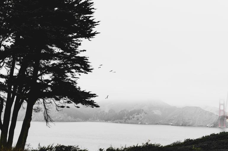180906_San Francisco-14