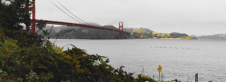 180906_San Francisco-8